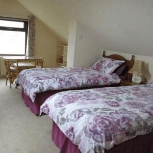 Dorm double room